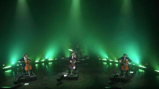 FOREST LIGHTS (LIVE)